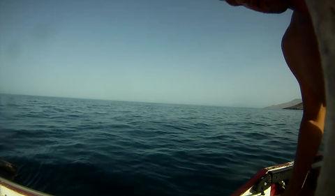 Dorade#B-on-sea-sportfishing