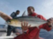 B-on-sea-sportfishing # Katsuwonus pelam