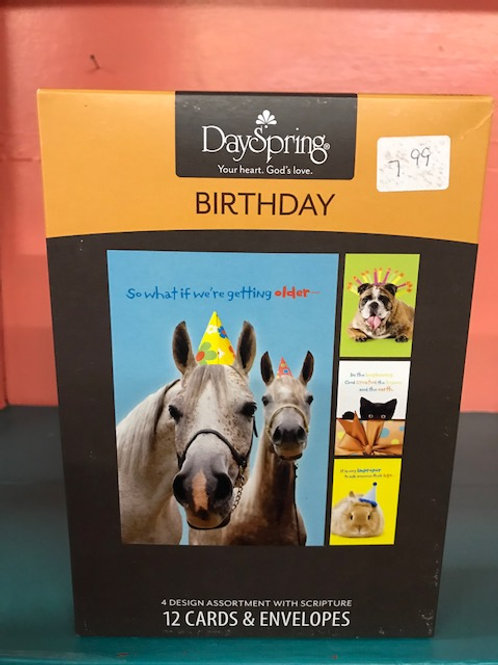 Birthday Juvenile Humor Pets
