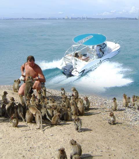 PACKAGE #2:      Monkey Island
