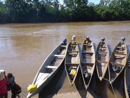 Shuar canoes in harbor copy.JPG
