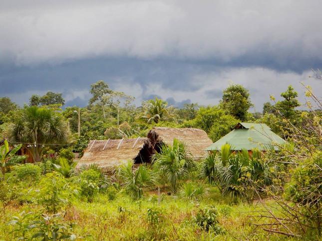 Shuar huts in the rain copy.jpg