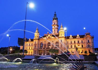 (RO) Întâlnire cu delegația Camerei de Comerț și Industrie din Győr (Ungaria)