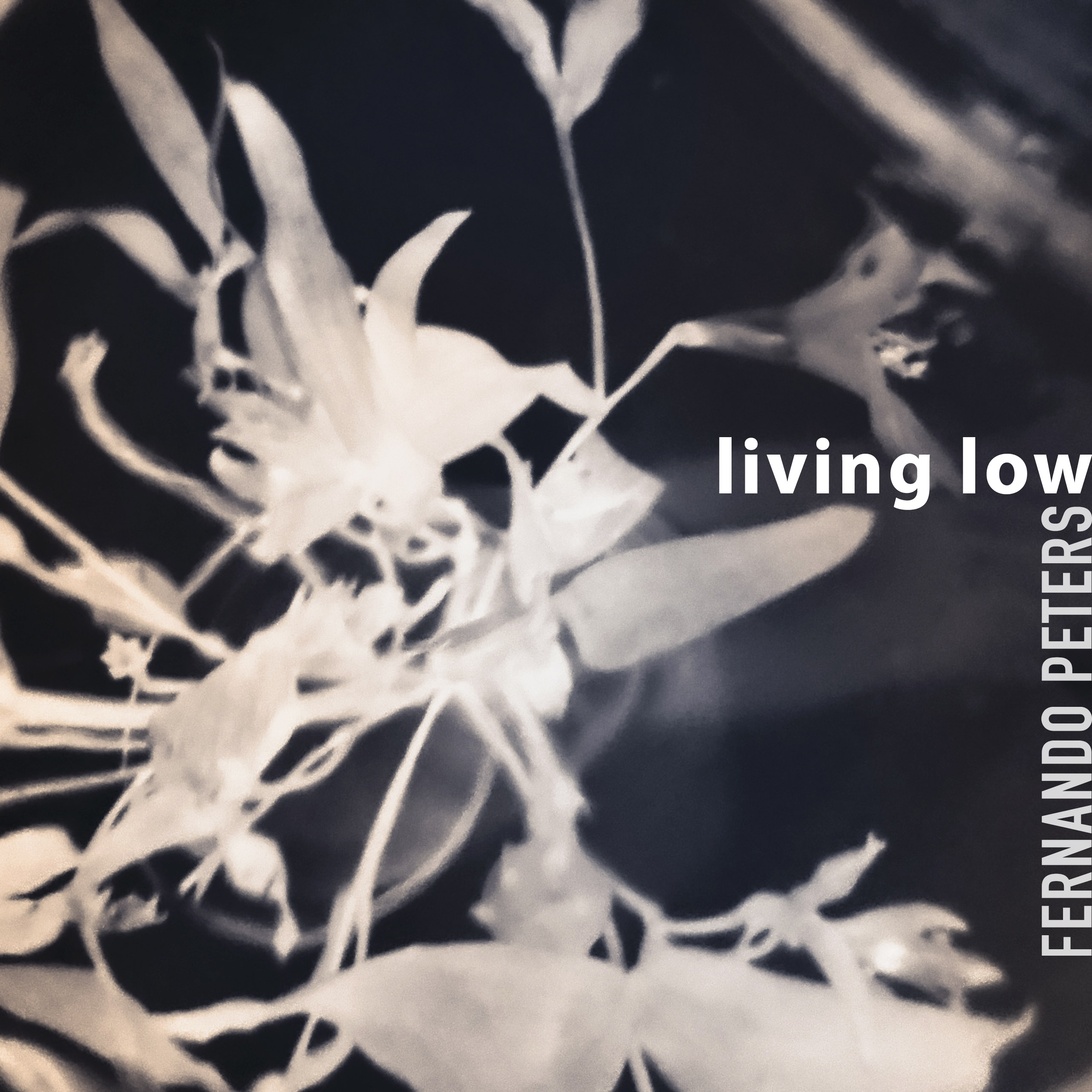 LivingLow_covernew