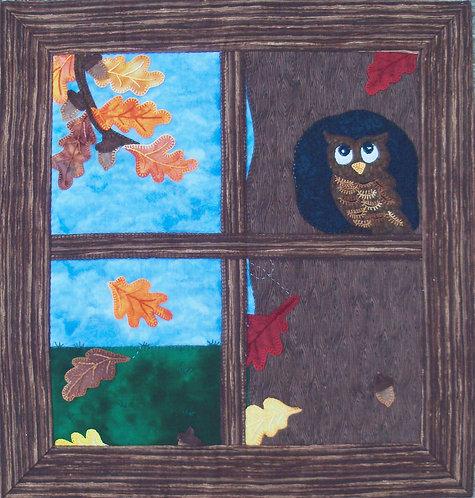 Whoo's In My Window