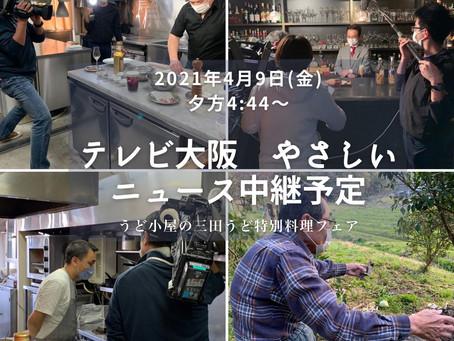 4/9(金)テレビ大阪「やさしいニュース」にて「うど小屋の三田うど特別料理フェア」に関するニュースが中継予定