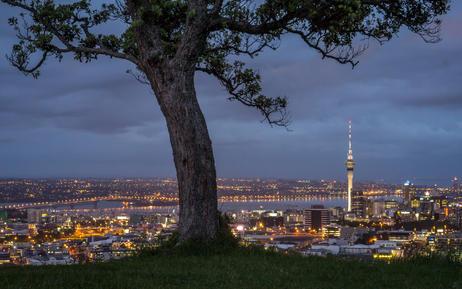 Mount Eden Views