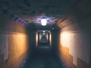 The Dark Side of Social Capital