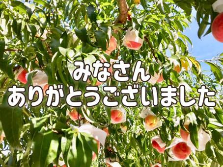 今年の桃の販売終了!ご愛顧感謝!