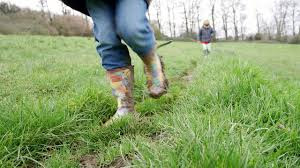 Nature walk on Charlies Farm
