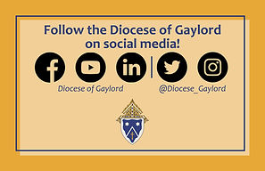 Diocese-of-Gaylord_SM-bulletin-ad_landscape.jpg