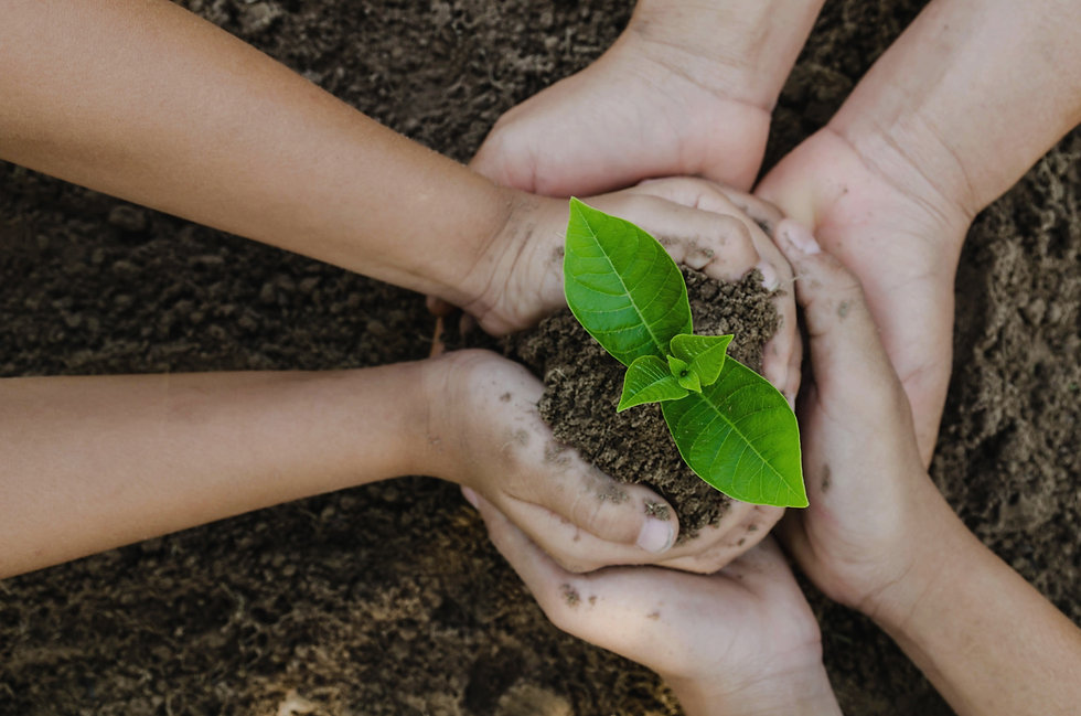 canva%20-%20growing%20concept%20eco%20group%20hand%20%20children%20planting%20together%20on%20soil%2