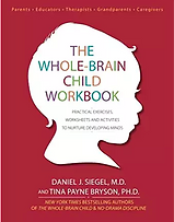 The Whole Brain Child_workbook.png