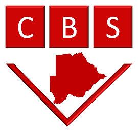 Software Development and ERP   CBS Botswana