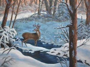 Winter Deer by Stream