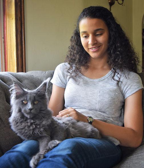 Maine Coon kitten zeuspride.com