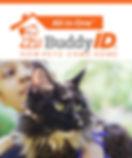 All-in-One-Buddy-Cat_edited-1.jpg