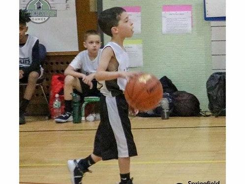 Spring Biddy Basketball