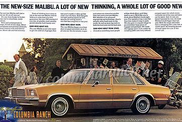 1978 Chevrolet Malibu.jpg