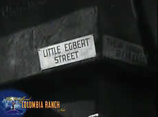 little egbert.jpg