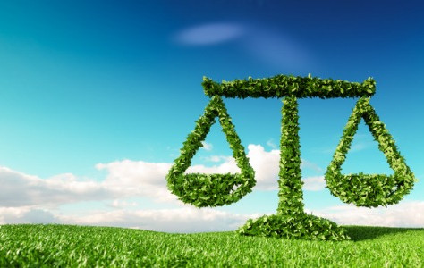 From niche to mainstream: the road ahead for climate litigation