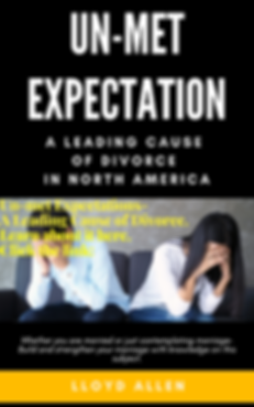 unmet expectation book cover to use.png