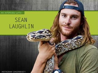 Sean Laughlin Interview