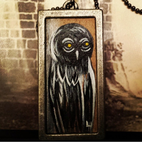 Owl Problems