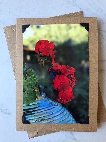 Red Flower in Blue Pot-OTF