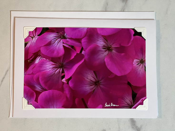 Greeting Card - Pink cluster of flowers on white