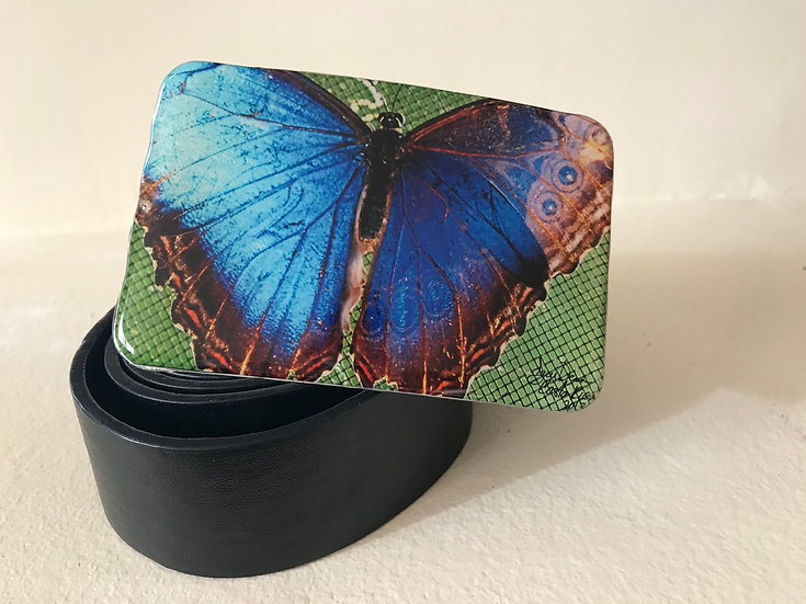 Butterfly - Large Blue