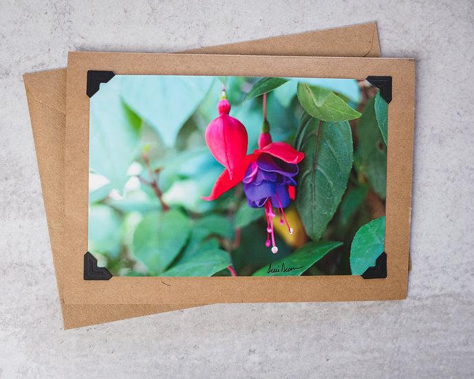 Red/Purple Flower