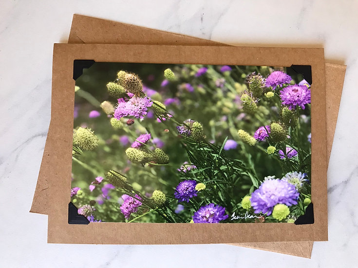 Purple Wildflowers - OTF