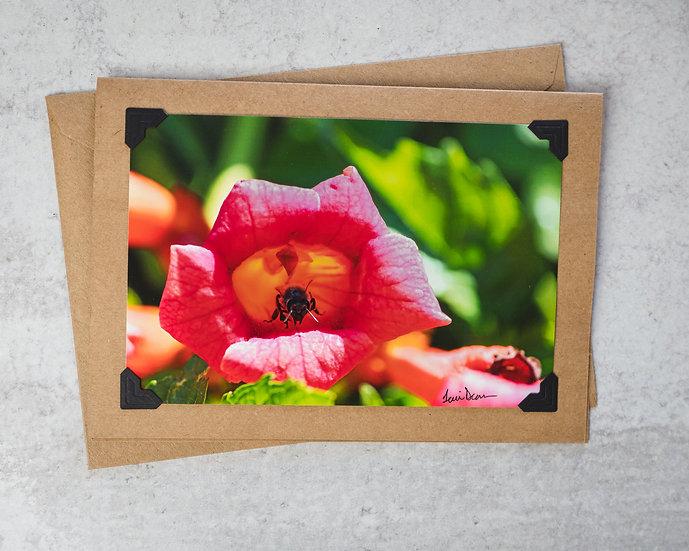 Pink Flower - Bee Inside