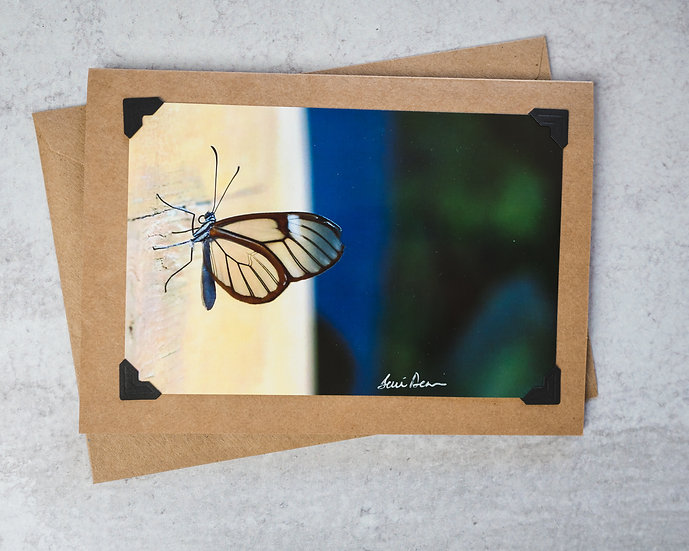 Glass Winged Butterfly - Blue