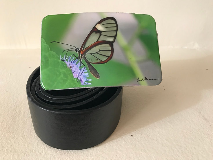 Glass Winged - Green