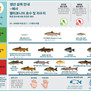 낚시꾼: 얼마나 많은 물고기가 먹어도 안전한지 알고 싶습니다