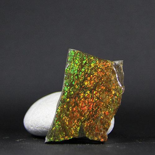 Ammolite Gemstone #10