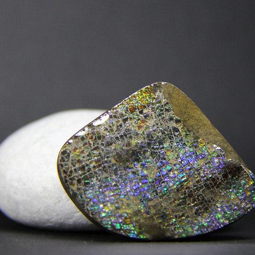 Ammolite Gemstone #1