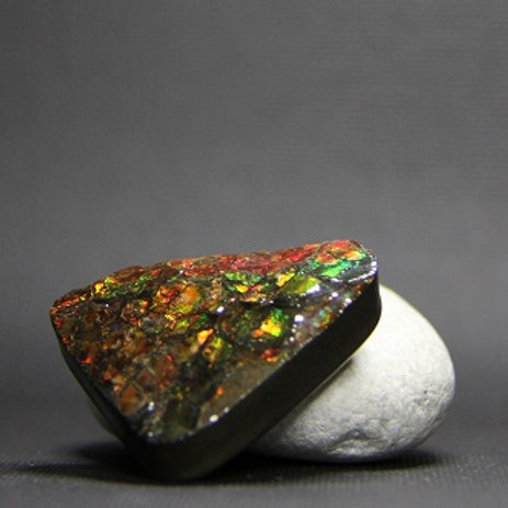 Ammolite Gemstone #26