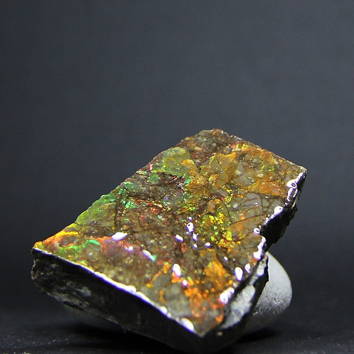 Ammolite Gemstone #32