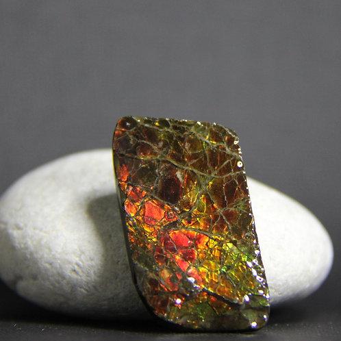 Ammolite Gemstone #2