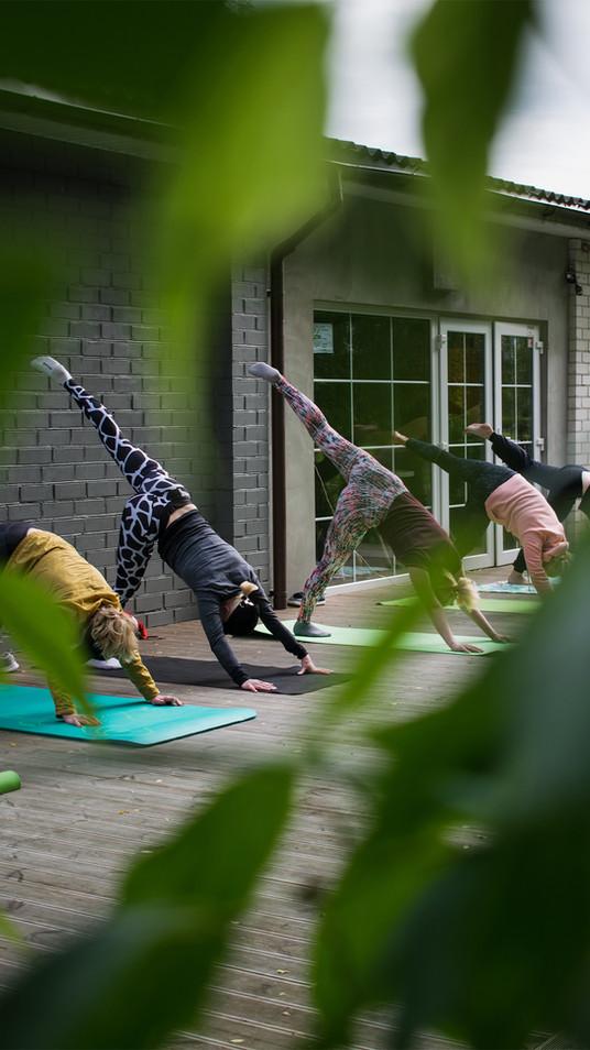 odyssey_yoga.jpg