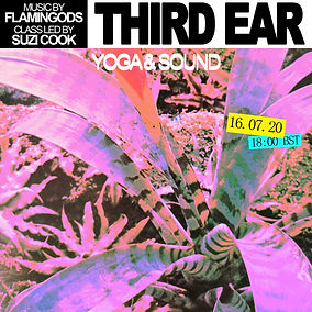 THIRD EAR flamingods2.jpg