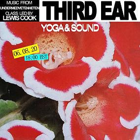THIRD EAR undermedvetenheten.jpg