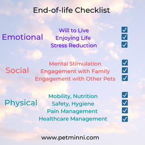 An End-of-Life Checklist For Your Beloved Pet