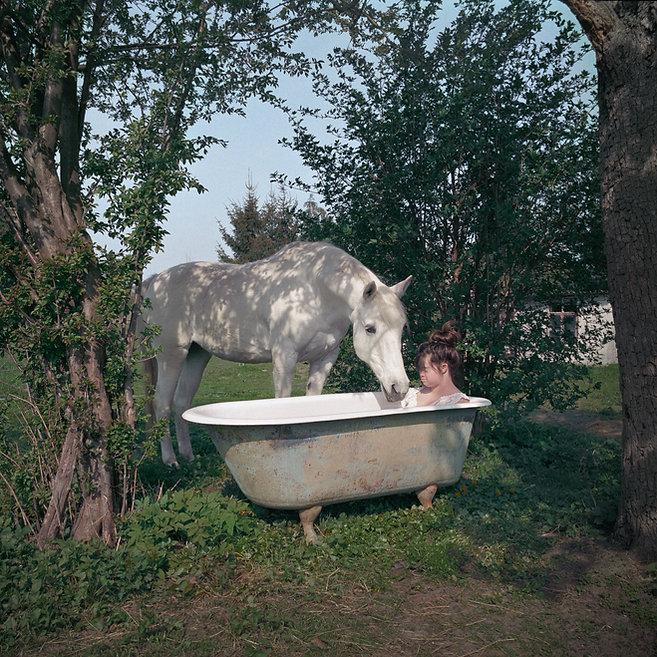 Pony_SVB.jpg