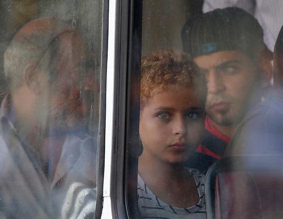 Darrin Zammit Lupi Boy Window_DZL.jpg