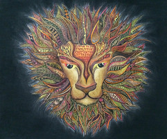 Tribe of Yehuda Lion
