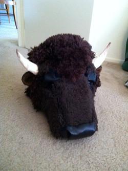 The Buffalo Killer
